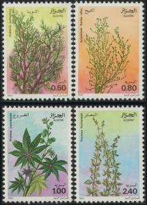 Algeria 1982 Flowers Medicinal Plants Flora Nature Cypress Stamps MNH Sc 690-693