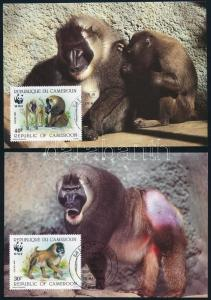 Cameroon stamp WWF Monkies set 4 CM Cover 1988 Mi 1155-1158 WS244360