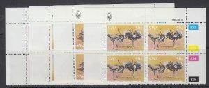 South West Africa, Scott 536-539, MNH blocks of four