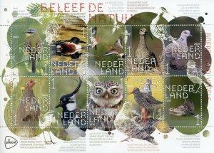 Netherlands Farmland Birds on Stamps 2020 MNH Ducks Owls Waders Nature 10v M/S