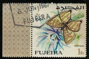 Butterfly (T-4937)