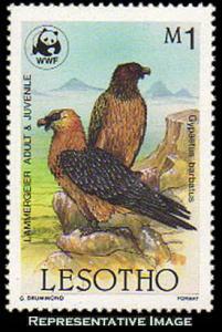 Lesotho Scott 515 Mint never hinged.