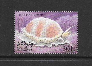 MARINE LIFE - MALDIVES #2382  COWRIE   MNH