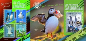 Z08 IMPERF CA190511ab CENTRAL AFRICA 2019 Sea birds MNH ** Postfrisch