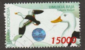 1803 duck