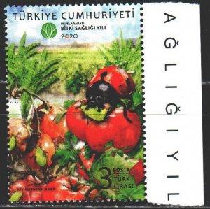 Turkey. 2020. Ladybug, insects, tomato, ofoshi. MNH.