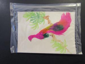 Taiwan 1960 Hand Painted / Feathered Postal Card / Used / Sealed - Z4260