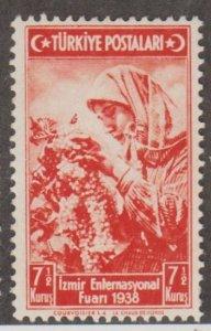 Turkey Scott #795 Stamp - Mint Single
