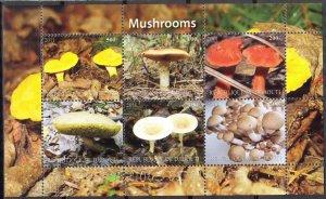 Djibouti 2011 Mushrooms (4) MNH Cinderella !
