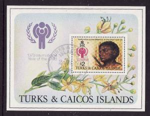 Turks & Caicos Is.-Sc#390-used sheet-Paintings-Year of the Child-1979-