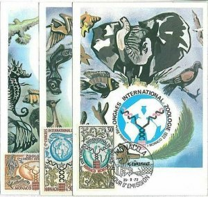 14712 - MONACO - POSTAL HISTORY -  MAXIMUM CARD -  ZOOLOGY birds  FISH