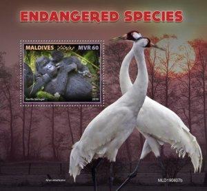 MALDIVES - 2019 - Endangered Species - Perf Souv Sheet - MNH