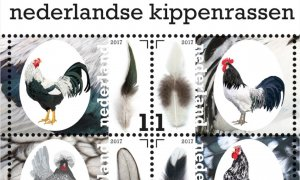 COLOR PRINTED NETHERLANDS 2011-2017 STAMP ALBUM PAGES (121 illustrated pages)
