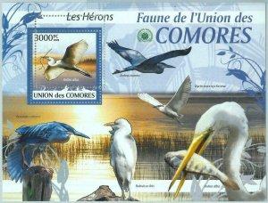 A0420 - COMORES, ERROR, MISPERF, Souvenir sheet: 2009 Wading Birds, Herons