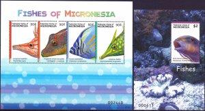 Micronesia. Fish. MNH.
