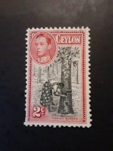 +Ceylon #278*