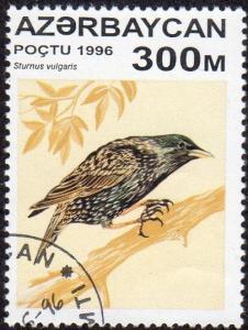 Azerbaijan 595 - Cto - 300m Common Starling (1996) (cv $0.90) (1)