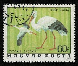 Bird (TS-2078)