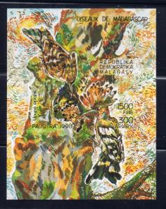 Malagasy 1036 NH 1991 Birds souvenir sheet