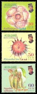 Brunei 2000 Scott #556-558 Mint Never Hinged