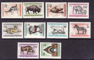 D4-Hungary-Sc#1346-55-unused NH set-Animals-Budapest Zoo-196