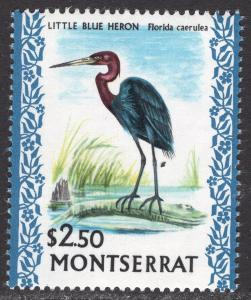 MONTSERRAT SCOTT 242