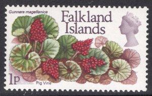 FALKLAND ISLANDS SCOTT 211