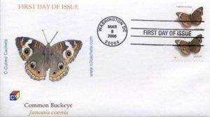 C³ C-Cubed 4000 Common Buckeye Butterfly 107