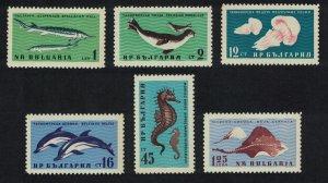 Bulgaria Sturgeon Jellyfish Seahorse Dolphins Ray Fish Black Sea Fauna 6v