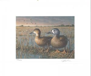 TEXAS #13 1993 STATE DUCK STAMP PRINT BLUE WINGED TEAL  by Jim Hautman 2 stamps