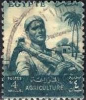 Egypt; 1954-55: Sc. # 371: O/Used Single Stamp