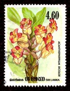 Sri Lanka 1984 Orchid Flowers, Acanthephippium bicolor 4.60r Sc.723 Used (#2)