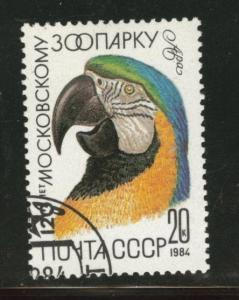 Russia Scott 5230 used CTO 1984 Macaw Bird stamp