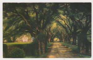 Unused Postcard: The Okeetee Ckub, Ridgeland, SC