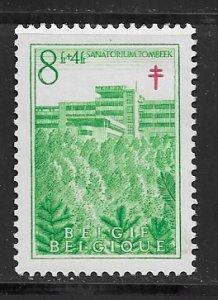 Belgium B491 MLH stain on gum f, see desc. 2019 CV $25.00