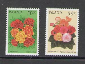 Iceland Sc 1005-6 2004 flower stamps mint NH