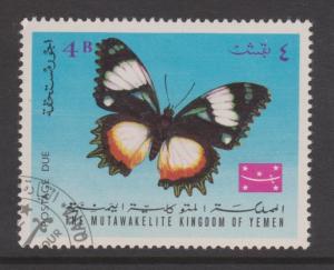Yemen Kingdom Butterfly CTO