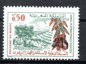 1970 - Morocco - World Olive Oil Production Year- Farmers- Complete set 1v.MNH**