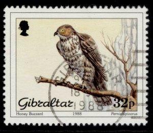 GIBRALTAR QEII SG598, 1988 32p honey buzzard, FINE USED.