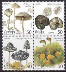 Serbia, Mushrooms / MNH / 2019