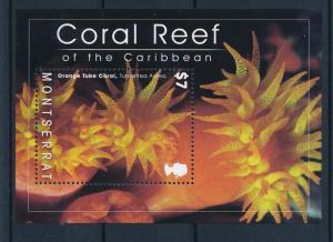 [40592] Montserrat 2009 Marine Life Corals  MNH Sheet