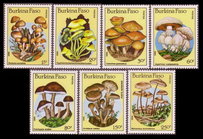 Burkina Faso Fungi Mushrooms 7v SG#820-826