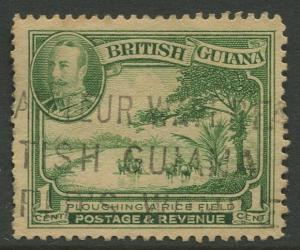 STAMP STATION PERTH British Guiana #210 - KGV Definitive Issue Used CV$2.25