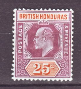 J22178 Jlstamps 1904-6 br honduras mh #67 king