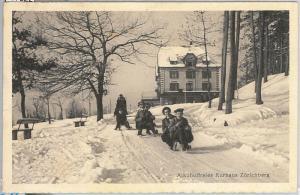 57522 -  SWITZERLAND -  Vintage Postcard - Zürich: Zürichberg 1913  DETOX !
