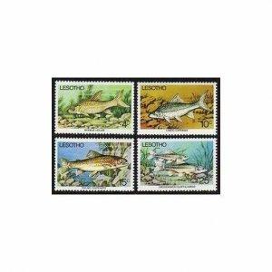 Lesotho 237-240,MNH.Michel 237-240. Fresh-water Fish,1977.