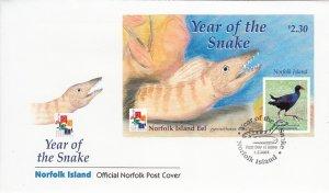 Norfolk Island 2001 FDC Sc #721 Souvenir sheet $2.30 Tarler Bird - Year of th...