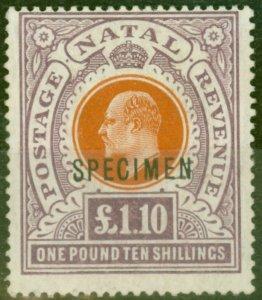 Natal 1904 £1.10s Brown-Orange & Dp Purple Specimen SG162s Fine Mtd Mint