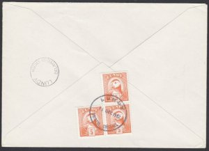 GB LUNDY 1982 cover  - Puffin stamps - DELAYED BY STORM.....................F880
