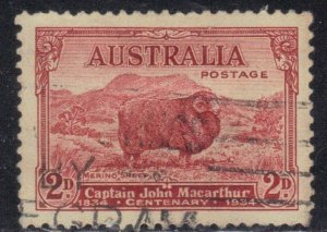 AUSTRALIA SC# 147 USED 2p 1934  MERINO SHEEP  SEE SCAN